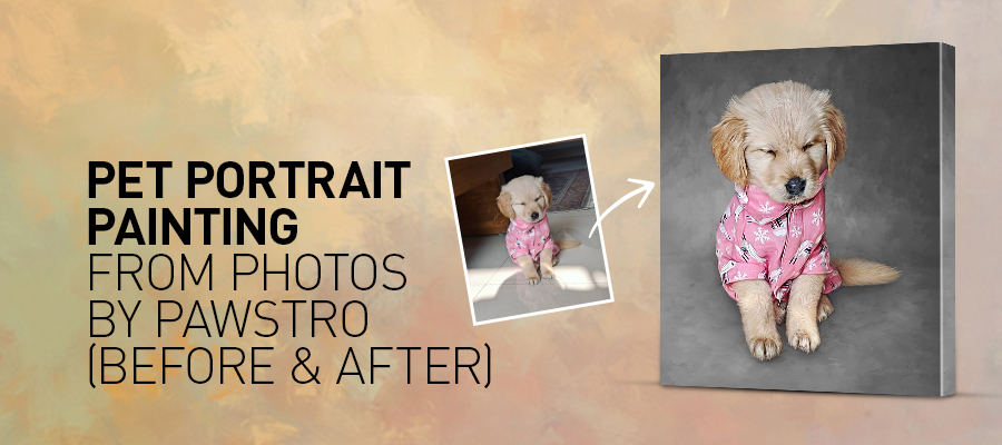 Pet Portrait Painting from Photos by Pawstro (Before & After)